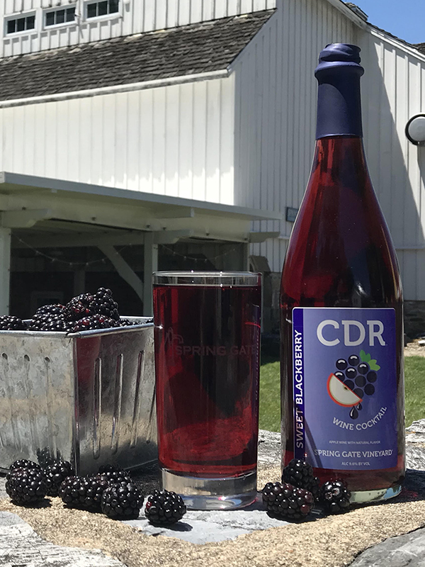 6 Bottles Blackberry Cider